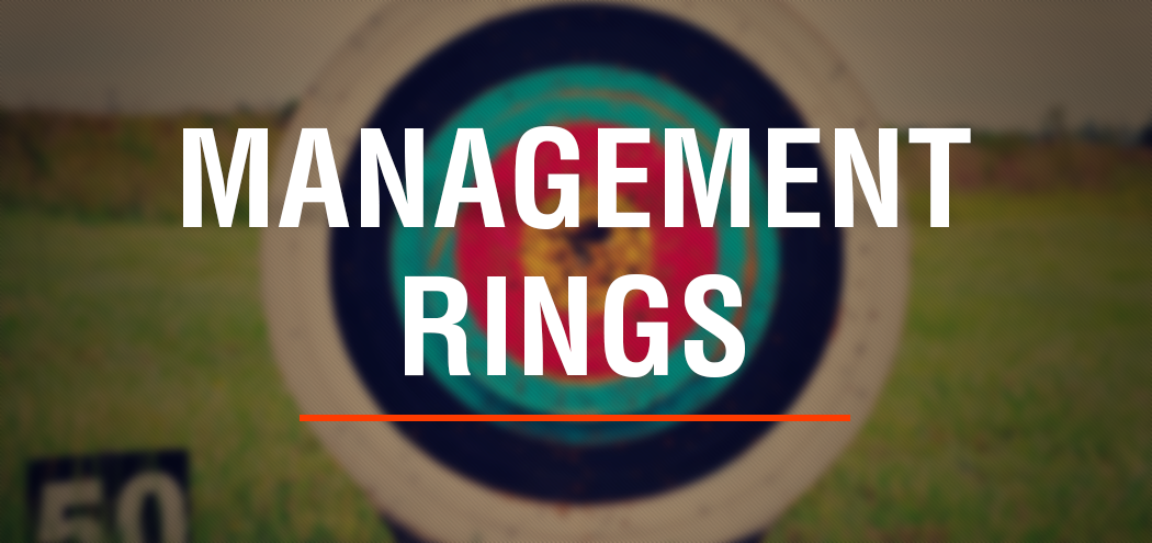 MNM Consulting Innovation Management Rings