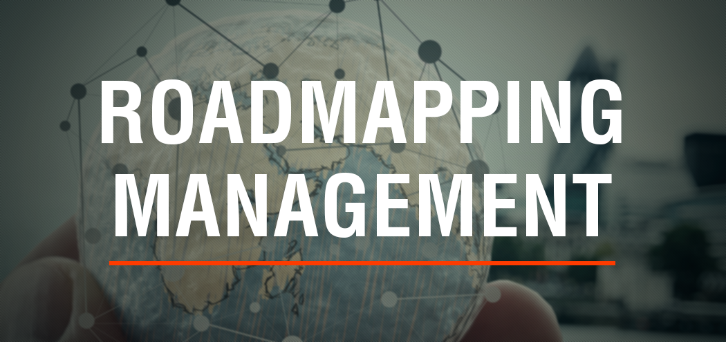 MNM Consulting Innovation Roadmapping Management