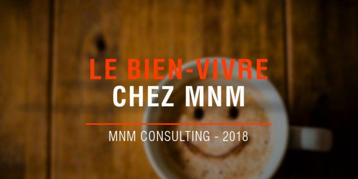 Mnm Consulting Cabinet De Conseil Et Dinnovation En Management